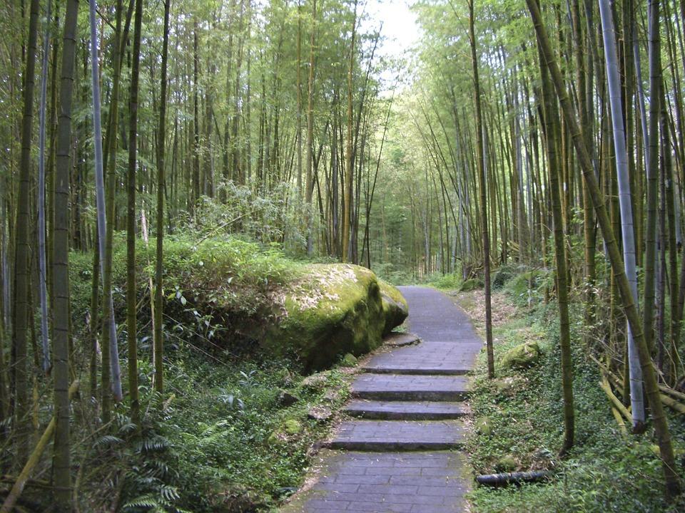 【12月23日】日本李登輝友の会「平成25年日台共栄の夕べ」のご案内
